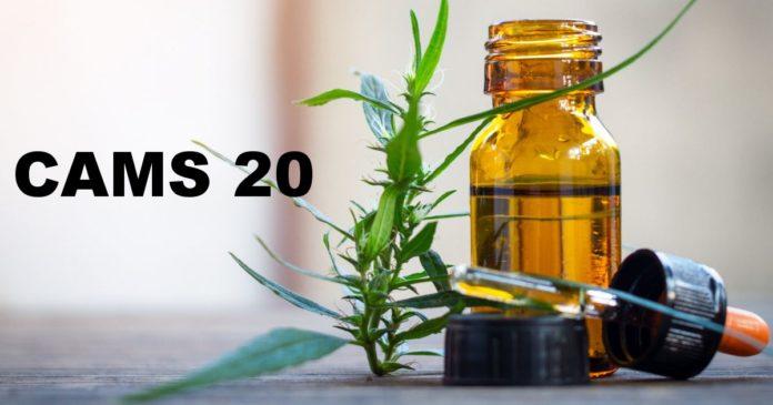Cannabis as Medicine Survey 2020
