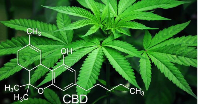 Consumer perceptions of CBD and THC