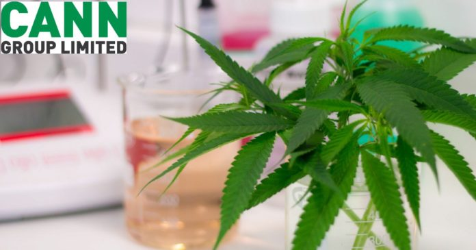 Cann Group - medical cannabis
