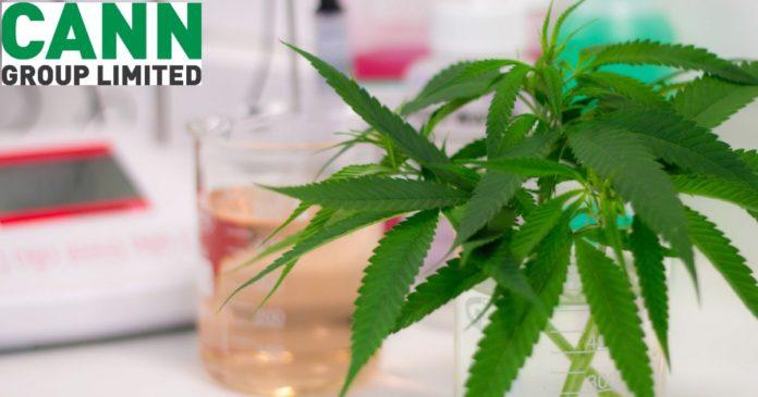 Cann Group - medical cannabis