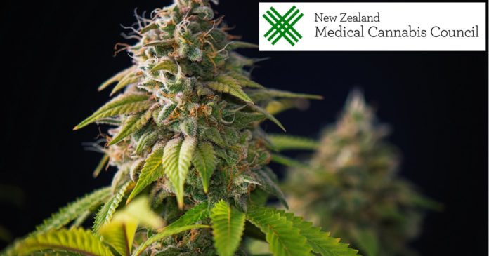 New Zealand medicinal cannabis imports