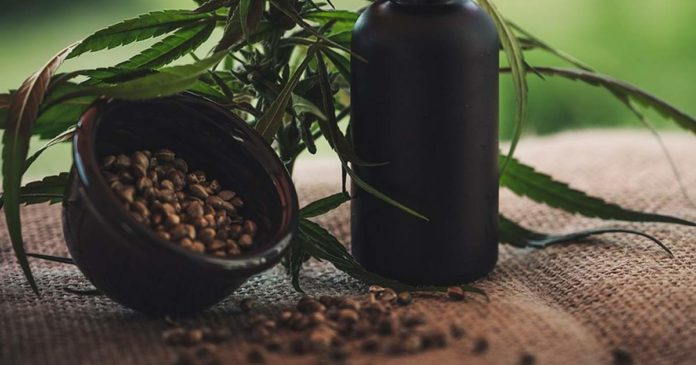 Hemp seed and cosmeceuticals