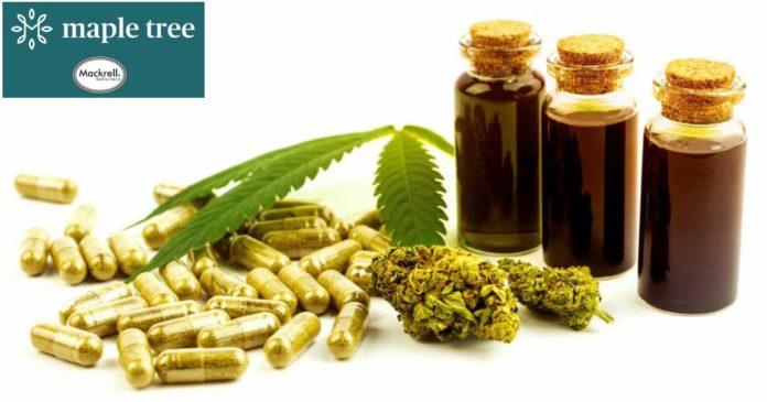 UK CBD and medical cannabis reform