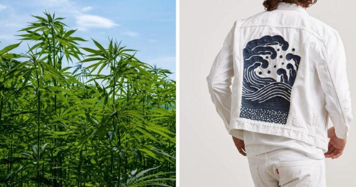 Levi's, jeans and hemp