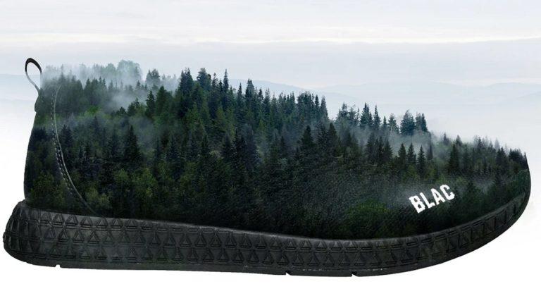 Australian Hemp Sneaker Company Planting Trees