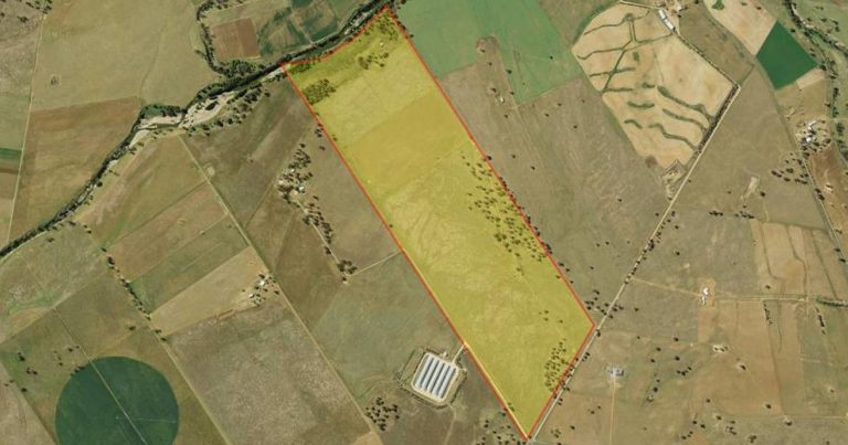 Cann's Proposed NSW Cannabis Project In Public Comment Period